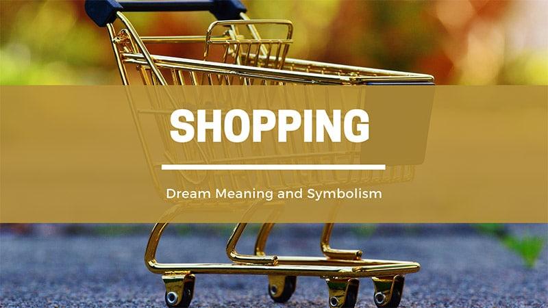 shopping dream