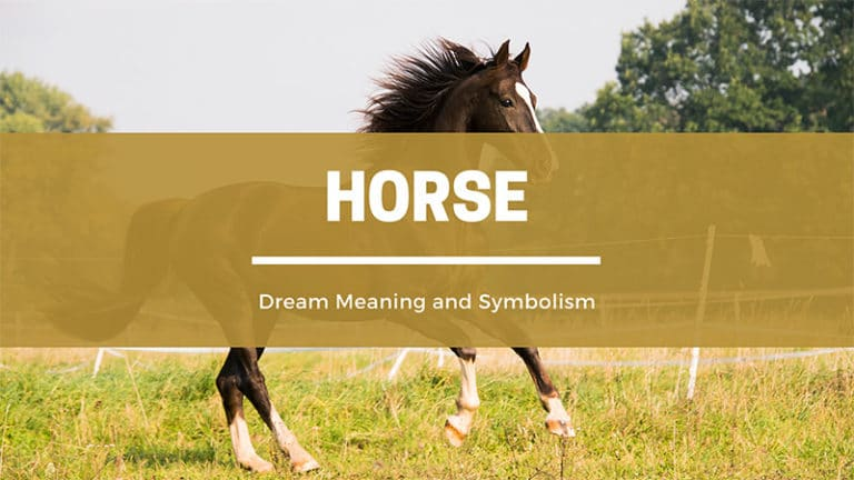 Horse Dream Symbolism and Spiritual Meaning (Why Do They Show Up In My Dreams? )