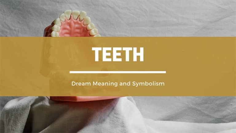 What Does It Mean To Have a Dream About Teeth? Dream Meaning and Symbolism