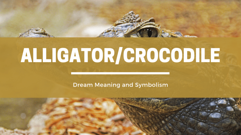 What Does It Mean To Dream Of An Alligator Or Crocodile? Dream Meaning and Symbolism